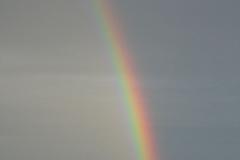 1632_sateenkaarivariskivella15062004